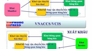Các cty Logistics muốn thêm dịch vụ VNACCS/VCIS